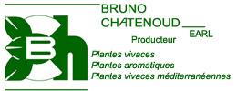 Bruno Chatenoud